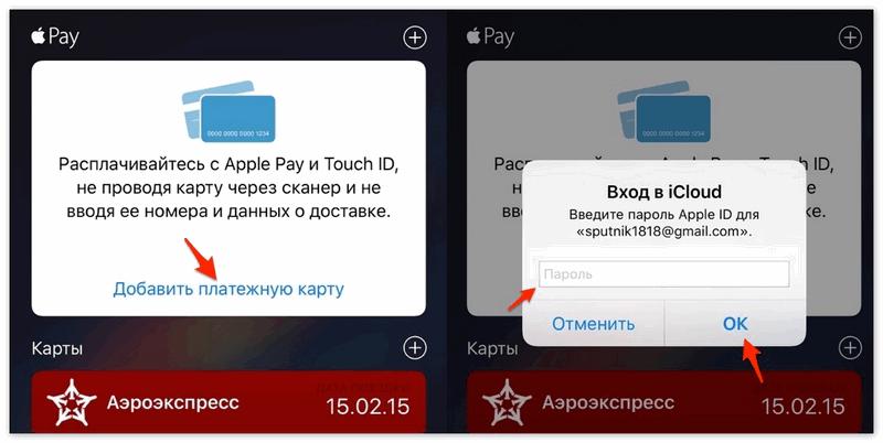 Добавить карту в платежное приложение
