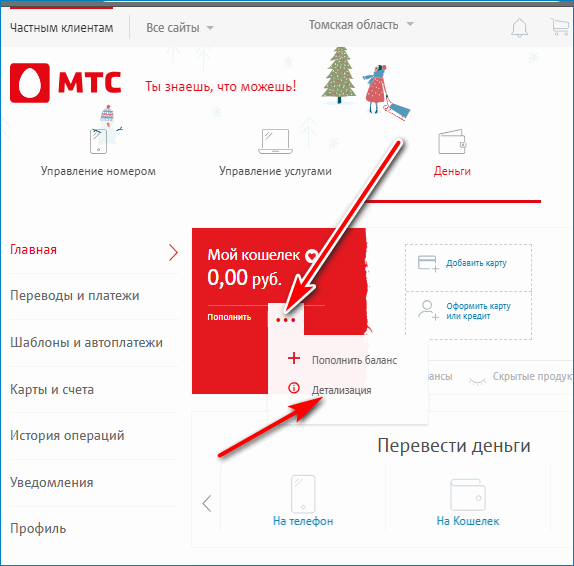 Детализация MTS Pay