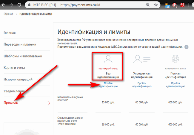 Идентификация MTS Pay