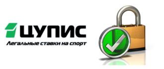 Лого 2 ЦУПИС