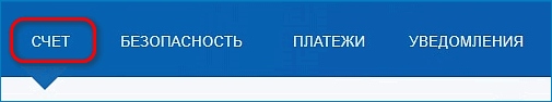 Раздел Счет PayPal