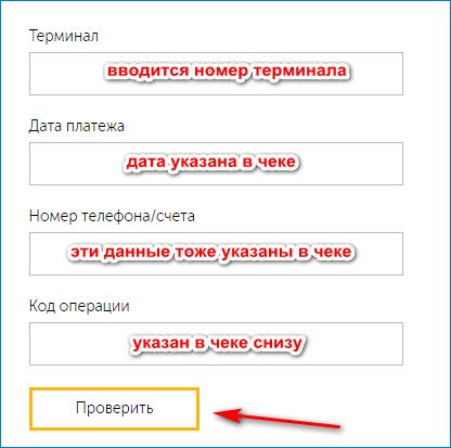 Введение данных при проверке платежа Киви