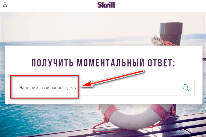 Напишите вопрос Skrill
